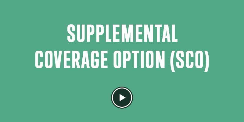 supplemental-coverage-option