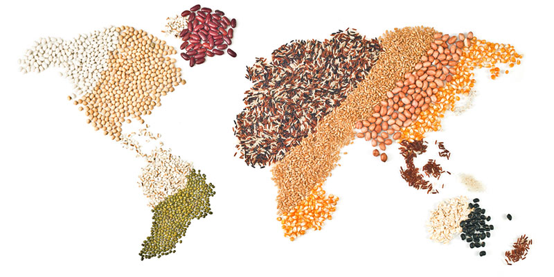 World Map in Grains