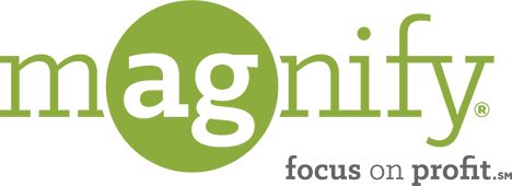 Magnify Logo - focus on profit.